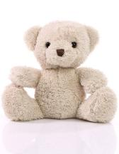 Soft Plush Teddy Merle